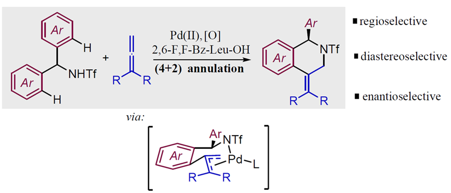 Palladium-catalyzed, enantioselective formal cycloaddition between benzyltriflamides and allenes: Straightforward access to enantioen-riched isoquinolines