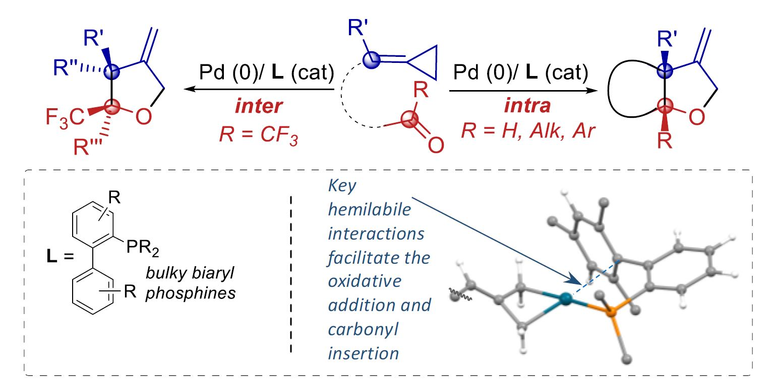 Pd–Catalyzed (3 + 2) Heterocycloadditions between Alkylidenecyclopropanes and Carbonyls: Straightforward Assembly of Highly Substituted Tetrahydrofurans