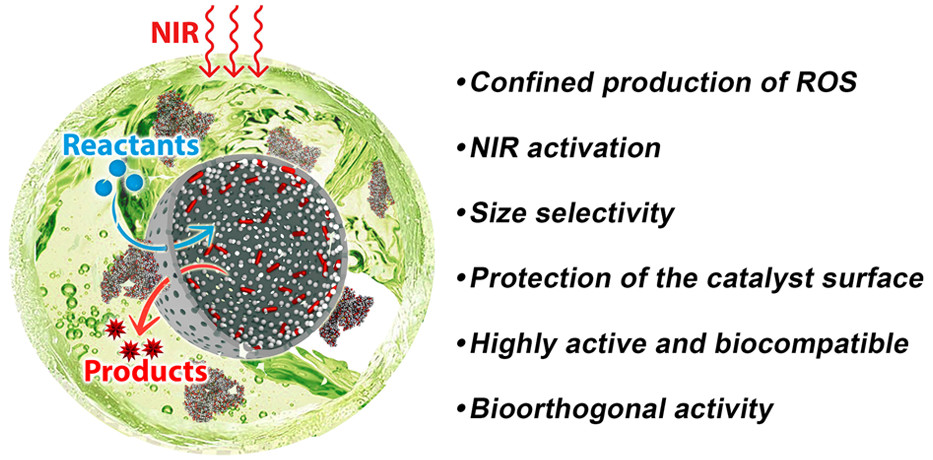 Remote Activation of Hollow Nanoreactors for Heterogeneous Photocatalysis in Biorelevant Media