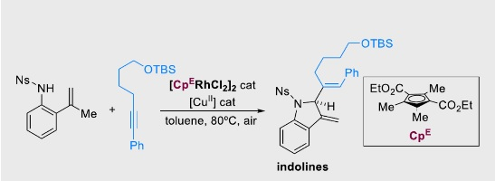 Rhodium(III)‐Catalyzed Annulation of 2‐Alkenylanilides with Alkynes via C‐H Activation: a Direct Access to 2‐substituted Indolines
