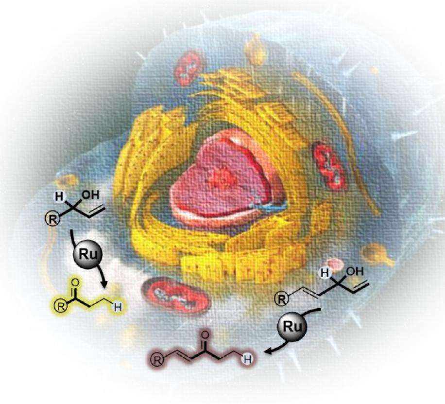 Ruthenium-catalyzed Redox Isomerizations inside Living Cells