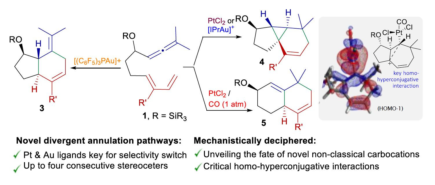 Skeletal Diversity in Pt- and Au-Catalyzed Annulations of Allenedienes: Dissecting Unconventional Mechanistic Pathways