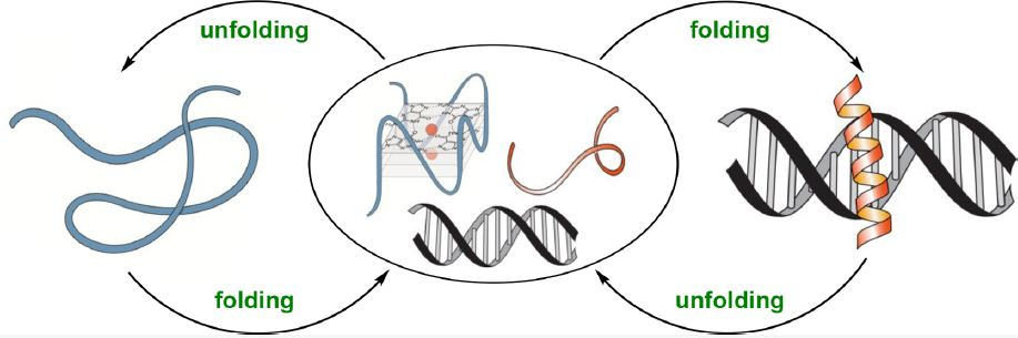 Stimuli-Responsive DNA Binding by Synthetic Systems